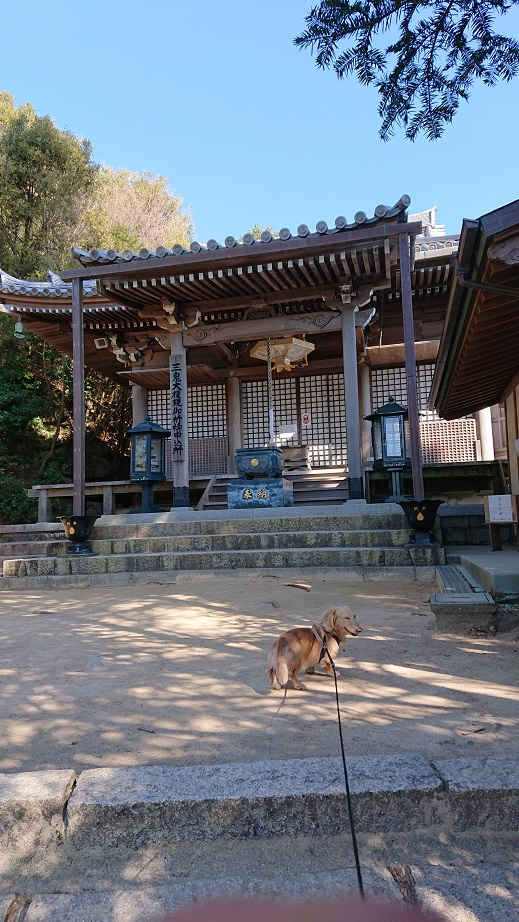 弥山登山道(紅葉谷コース) 三鬼堂と犬