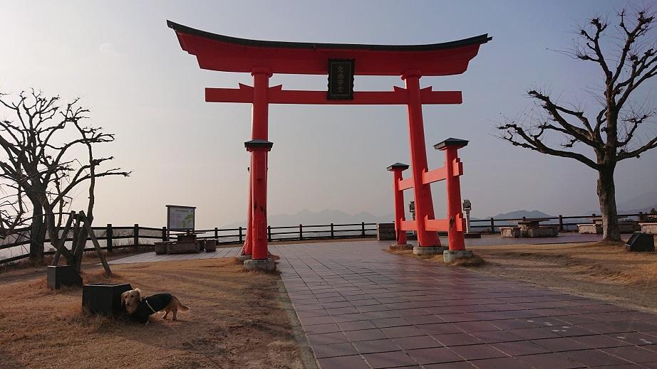 宮島サービスエリアの鳥居と犬