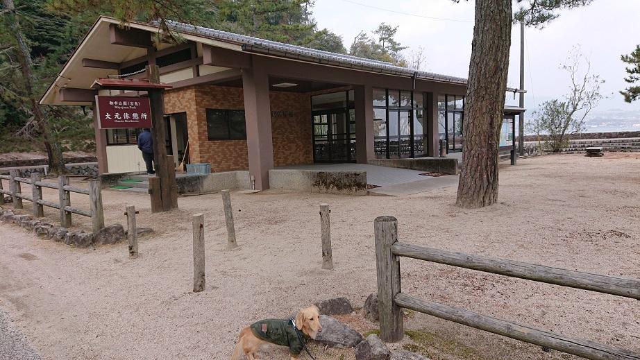 大元休憩所と犬