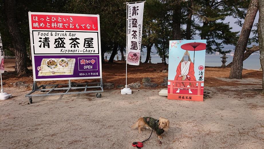 清盛茶屋と犬