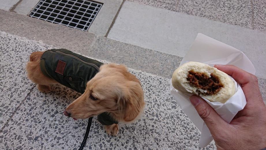 宮島表参道商店街牛マンと犬