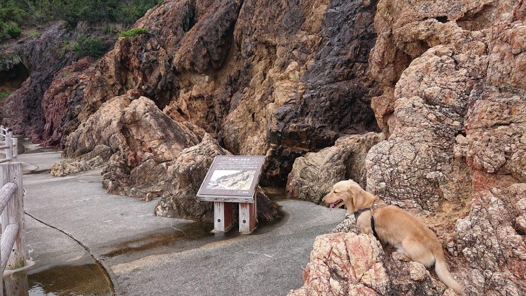 仙酔島の五色岩とダックス