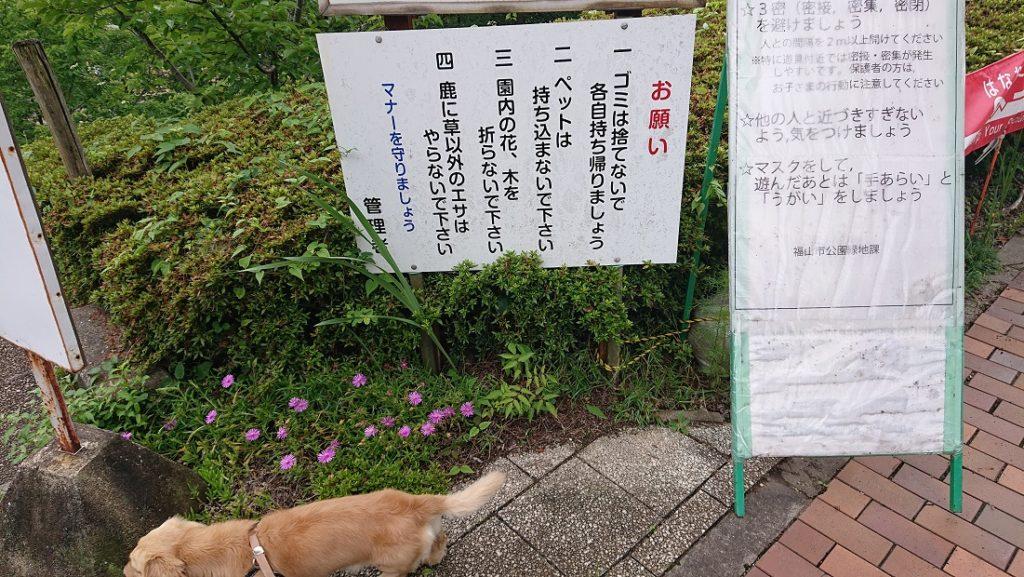 福山ファミリーパーク